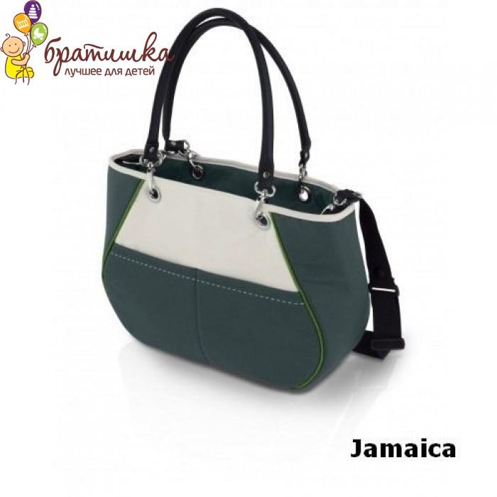 Navington Bakista, цвет Jamaica